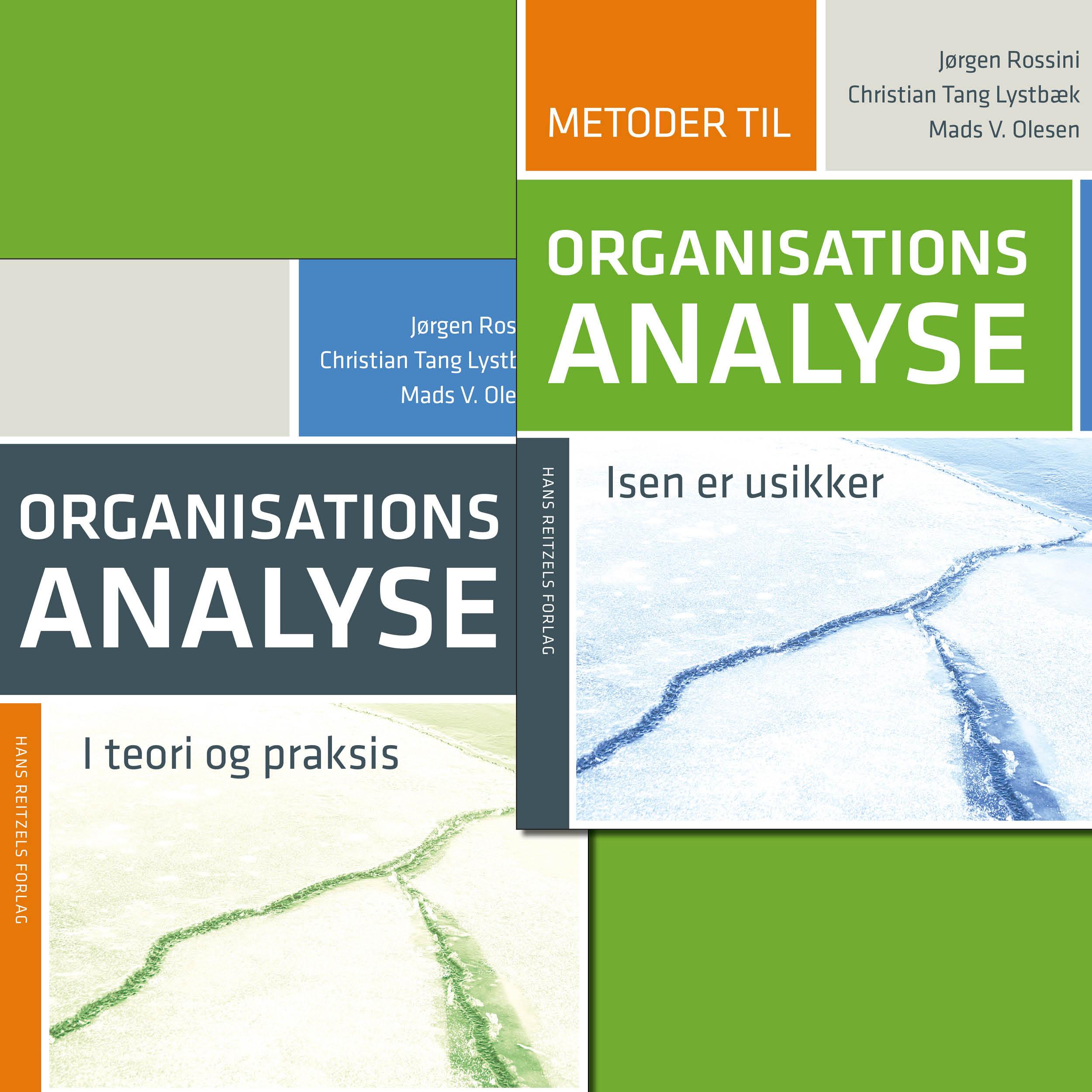 organisationsteori i praksis